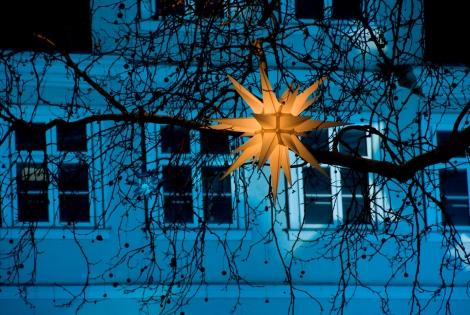 Weihnachtlicher Sternenglanz über dem Kohlmarkt. Foto: Andreas Maxbauer